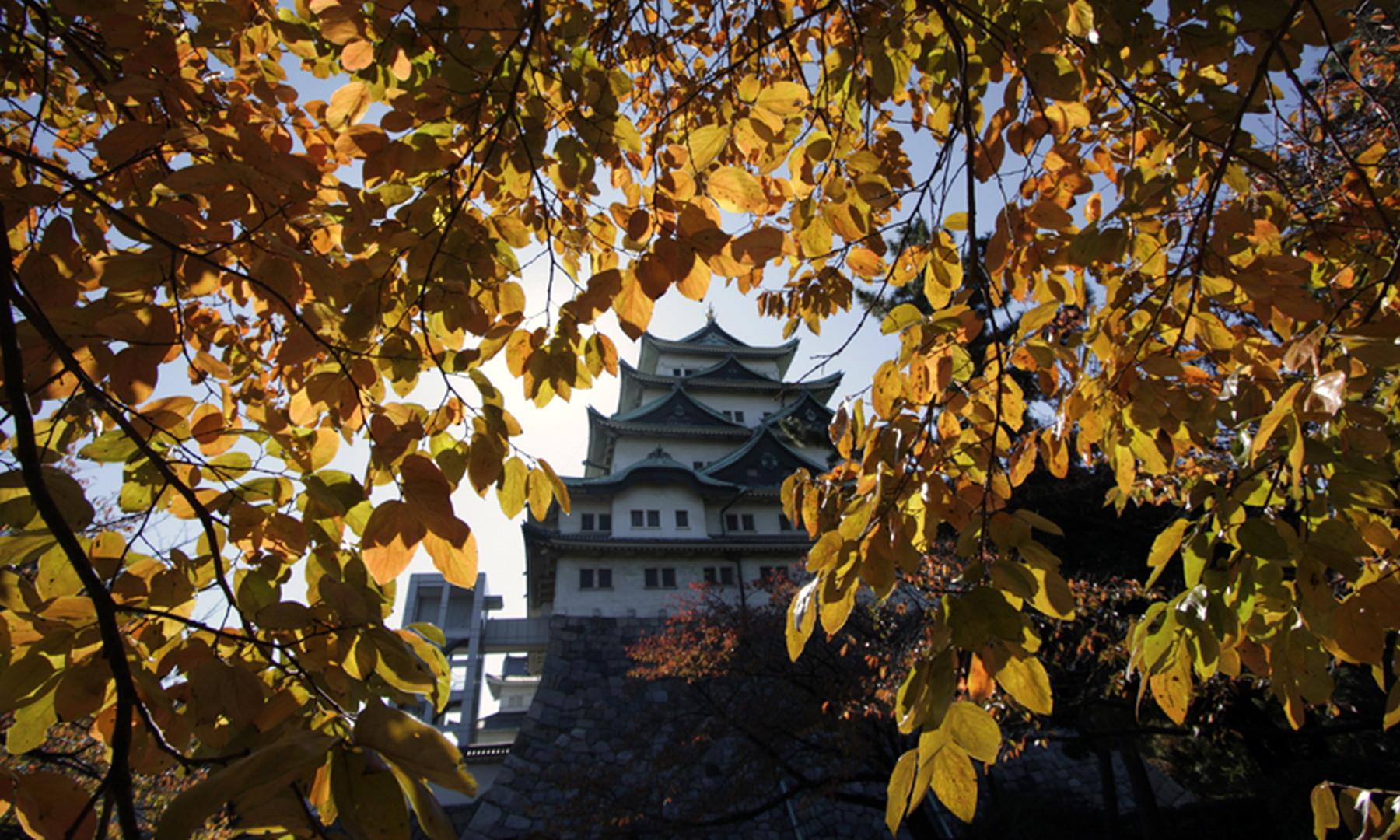 日本オペレーションズ・リサーチ学会2018年秋季研究発表会